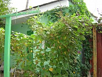 Снять дом в Феодосии